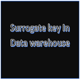 Surrogate key in Data Warehouse